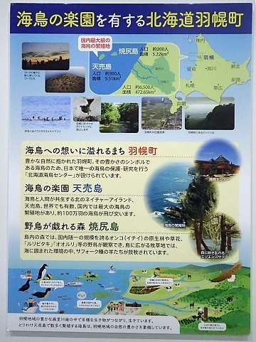 201122-13葛西臨海公園1121o (16)つどえオロローン関連展示.JPG