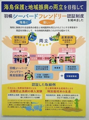 201122-15葛西臨海公園1121o (18)つどえオロローン関連展示.JPG