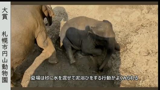 201205エンリッチメント大賞-04_Screenshot_20201205 (20).png