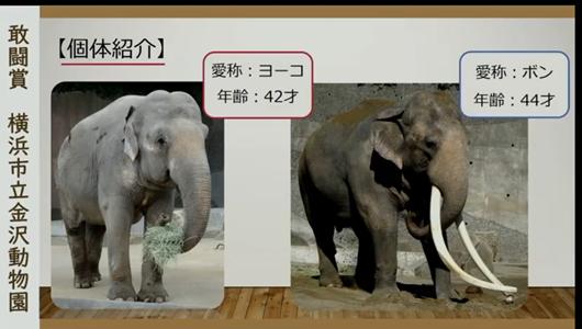 201205エンリッチメント大賞-16_Screenshot_20201205 (56).png