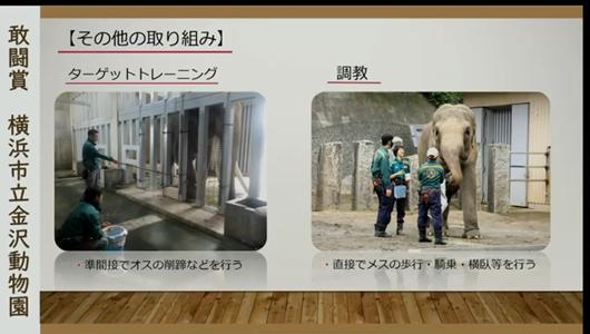201205エンリッチメント大賞-22_Screenshot_20201205 (64).png