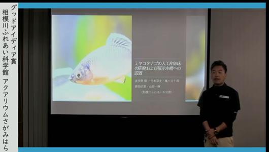 201205エンリッチメント大賞-28_Screenshot_20201205 (78)アクアリウムさがみはら_ミヤコタナゴ.png