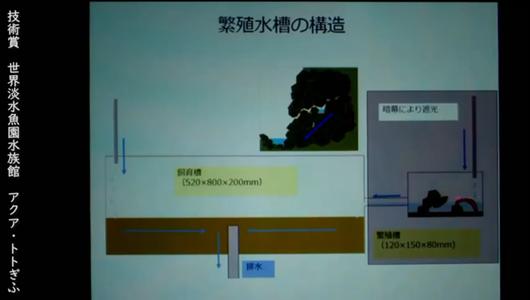 201205エンリッチメント大賞-44_Screenshot_20201205 (120)アクアトトぎふ_マホロバサンショウウオ.png