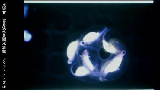 201205エンリッチメント大賞-47_Screenshot_20201205 (126)アクアトトぎふ_マホロバサンショウウオ.png