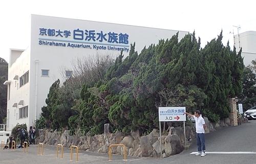 20191025_京大白浜水族館01_1020 (4).JPG