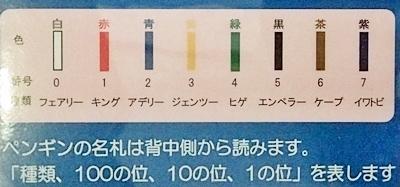 20191025_白浜アドベン33-1020o (209)ペンギンの名前_バンドの色の意味_0.JPG