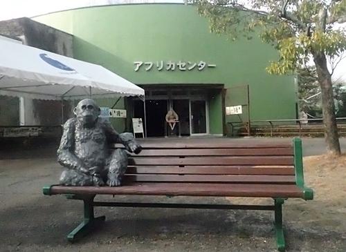 202001 犬山モンキーセンター_12_0103o (137)アフリカセンター_チンパンジーベンチ.JPG