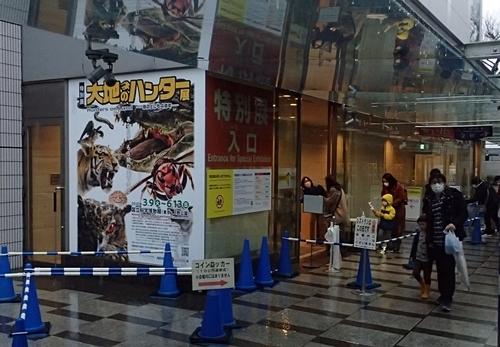 202103_科博_大地のハンター展_01_0313o (3)入口.JPG