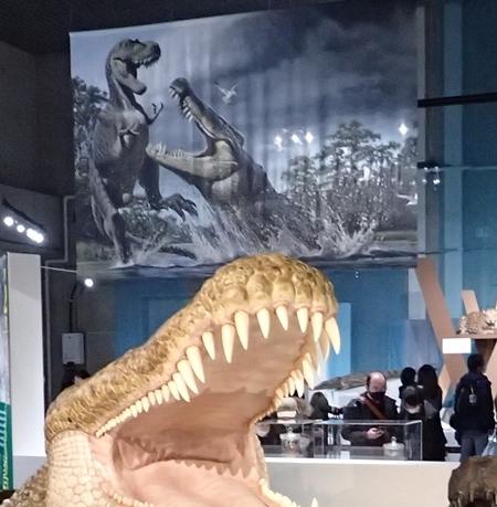 202103_科博_大地のハンター展_11_o (34)会場_ディノスクス恐竜を襲う.JPG