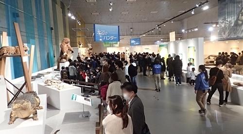 202103_科博_大地のハンター展_20_o (96)会場.JPG
