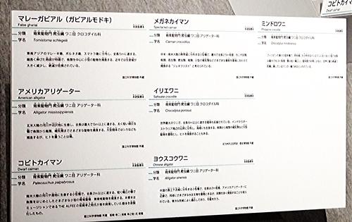 202103_科博_大地のハンター展_25_o (99)解説_ワニ_0000.JPG