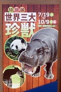 いしかわ動物園_看板_世界三大珍獣展.JPG