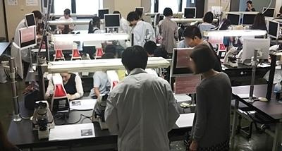 東大五月祭2018_34医学部.JPG