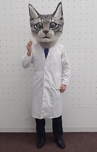 白衣猫1.JPG