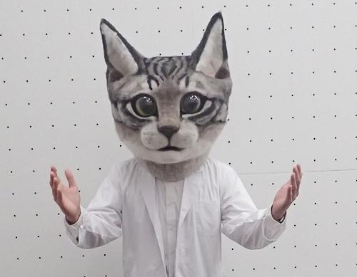 白衣猫3.JPG