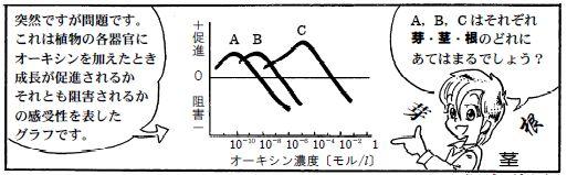 080202オーキシン感受性(1)-1