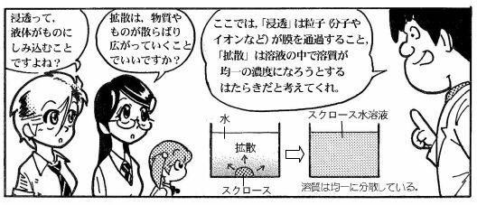 moebio080930_浸透圧-2-2.JPG