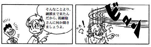081212 目の構造(14)-1