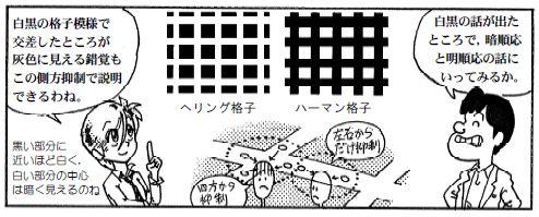 090116 目の構造(17)-1