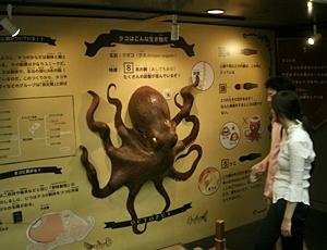 130905 葛西臨海タコ展.JPG