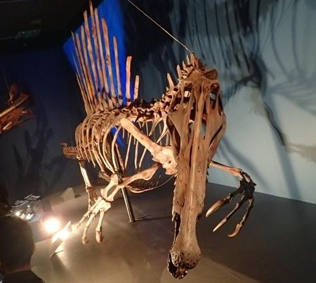 160404 科博_恐竜博 スピノ2.JPG