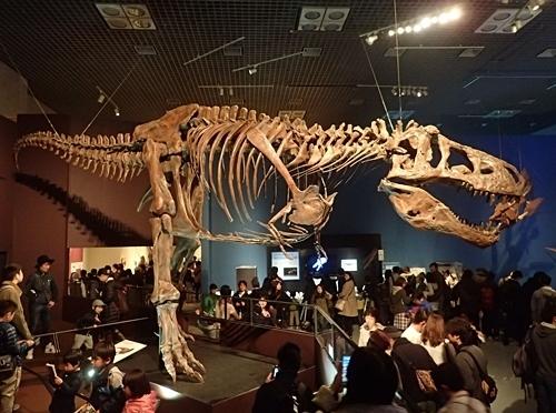 160404 科博_恐竜博 ティラノ2.JPG
