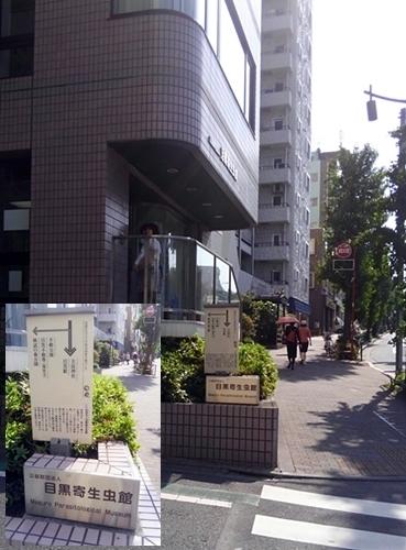160514目黒寄生虫館 (1).JPG