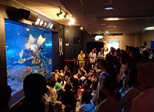 160626 しながわ水族館_水中ショー.JPG