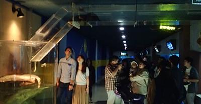160710 おたる水族館 07 展示上.JPG