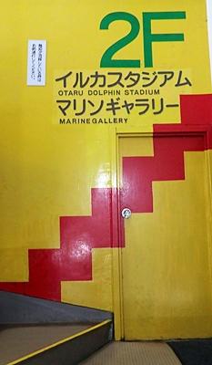 160710 おたる水族館 09 階段.JPG