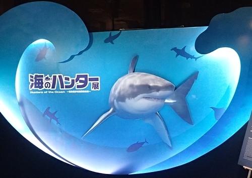 160715 海のハンター展 (1)エントランス.JPG