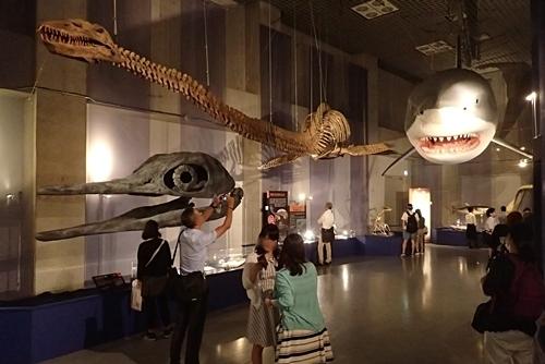 160715 海のハンター展 (2)古生代展示.JPG