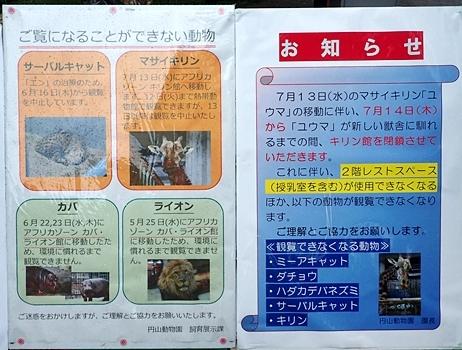 160716 円山動物園 展示中止2.JPG