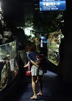 160726 千歳水族館10 千歳川ロード.JPG