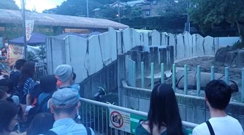 170818東山動物園ナイト03インドサイ.JPG