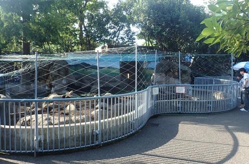 1709江戸川区自然動物園 05オグロプレーリードッグ舎.JPG