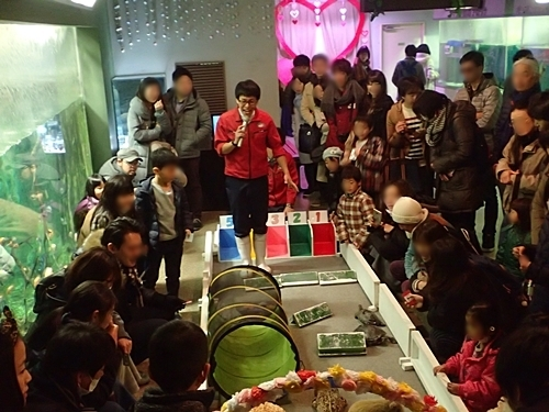 1803箱根園水族館 (30)亀レース.JPG