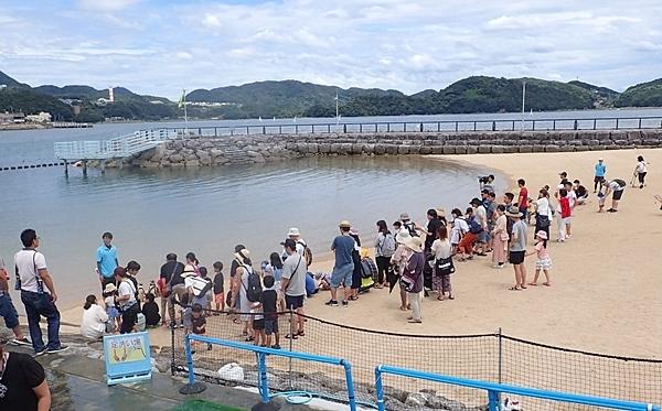 180722長崎ペンギン水族館60ふれあいペンギンビーチ_ペンギンと水遊ビーチ遠景.JPG