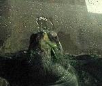 190102 森きらら07_五島の海水槽アオウミガメ_鼻水.JPG