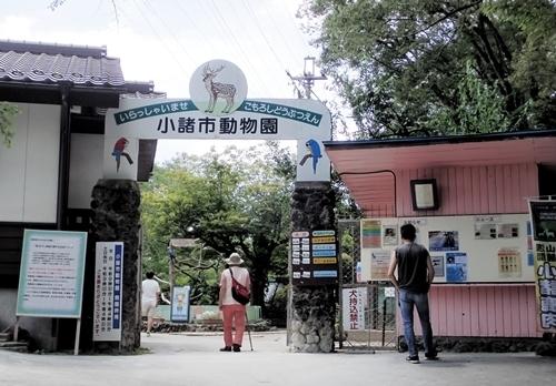 190825 小諸市zoo03_0817o (1)入口.JPG