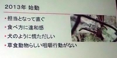 191208エンリッチメント大賞031_1207  (105)スライド_大森山動物園_トナカイ放牧等エンリッチメント.JPG