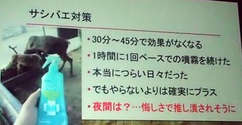 191208エンリッチメント大賞035_1207  (127)スライド_大森山動物園_トナカイ_サシバエ.JPG