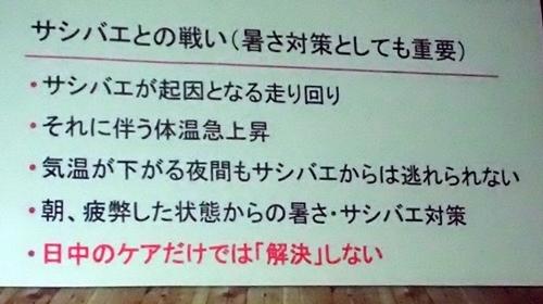 191208エンリッチメント大賞035_1207  (129)スライド_大森山動物園_トナカイ_サシバエ.JPG