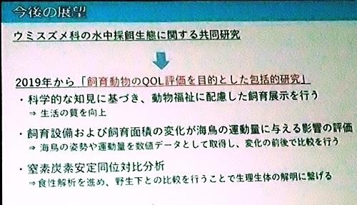 191231エンリッチメント大賞057_1207 (213)スライド_葛西臨海水族園_今後.JPG