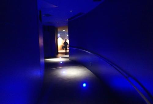 200628すみだ水族館_05_0624o (10)新施設ビッグシャーレ_予定スペース.JPG