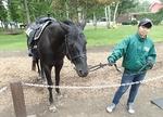ノーザンホースパーク160711-2 引き馬グスタフ.JPG