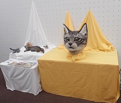 リアル猫ヘッド.JPG
