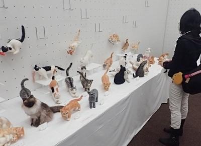 猫科作品展示.JPG