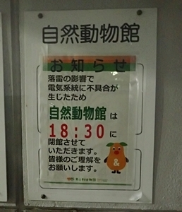 s170818東山動物園ナイト15自然動物館閉館.JPG